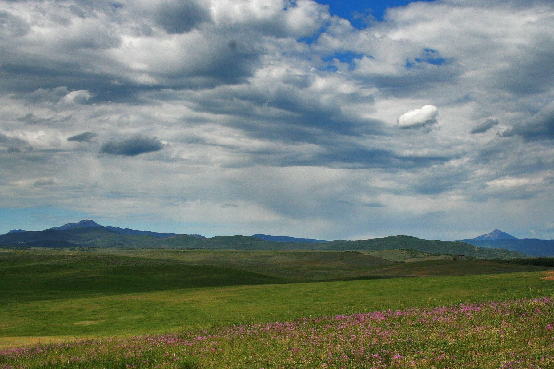 Terrain pour l Vente à Elk River Acreage 23355 County Road 52E Steamboat Springs, Colorado, 80487 États-Unis