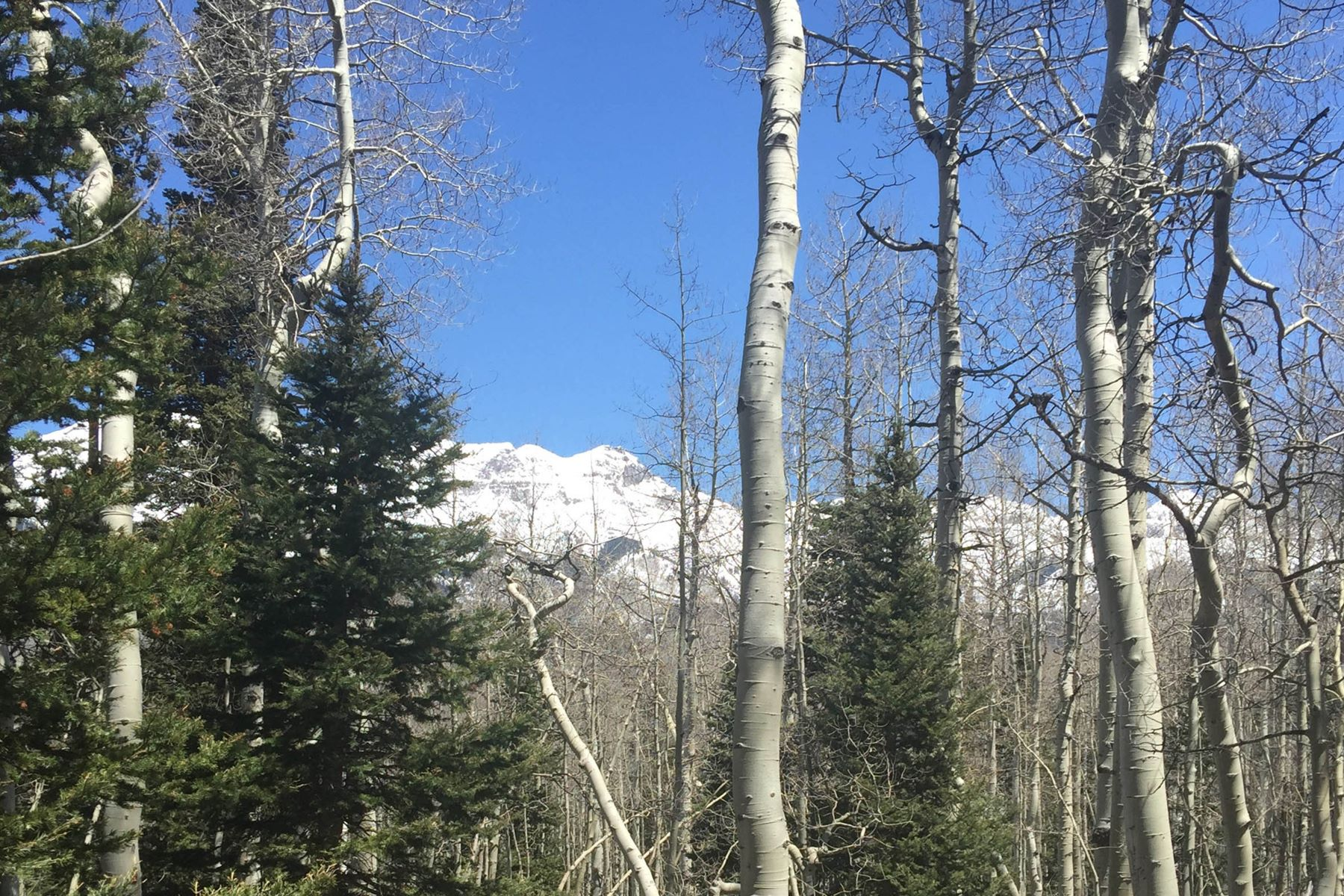 Đất đai vì Bán tại TBD Saddlehorn Lane, Lot 4 Telluride, Colorado, 81435 Hoa Kỳ