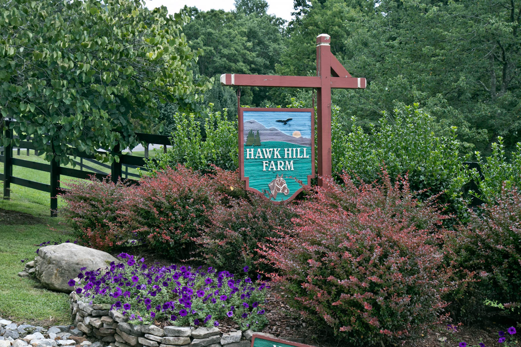 Single Family Home for Sale at Hawk Hill Farm 254 Revis Road Andrews, North Carolina, 28901 United States