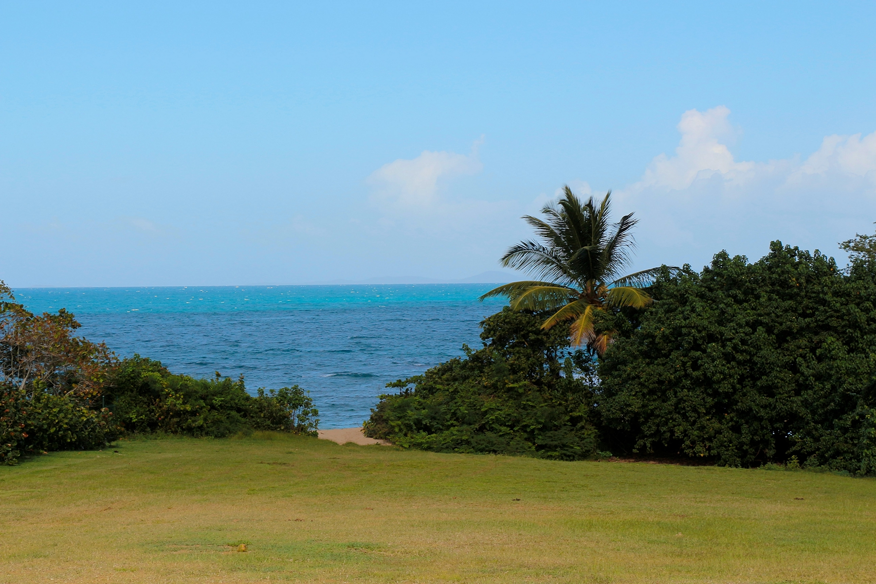 Additional photo for property listing at Architect Ready Beach Front lot, W Residences Lot 9 W Hotel Private Residences Vieques, Puerto Rico 00765 푸에르토리코