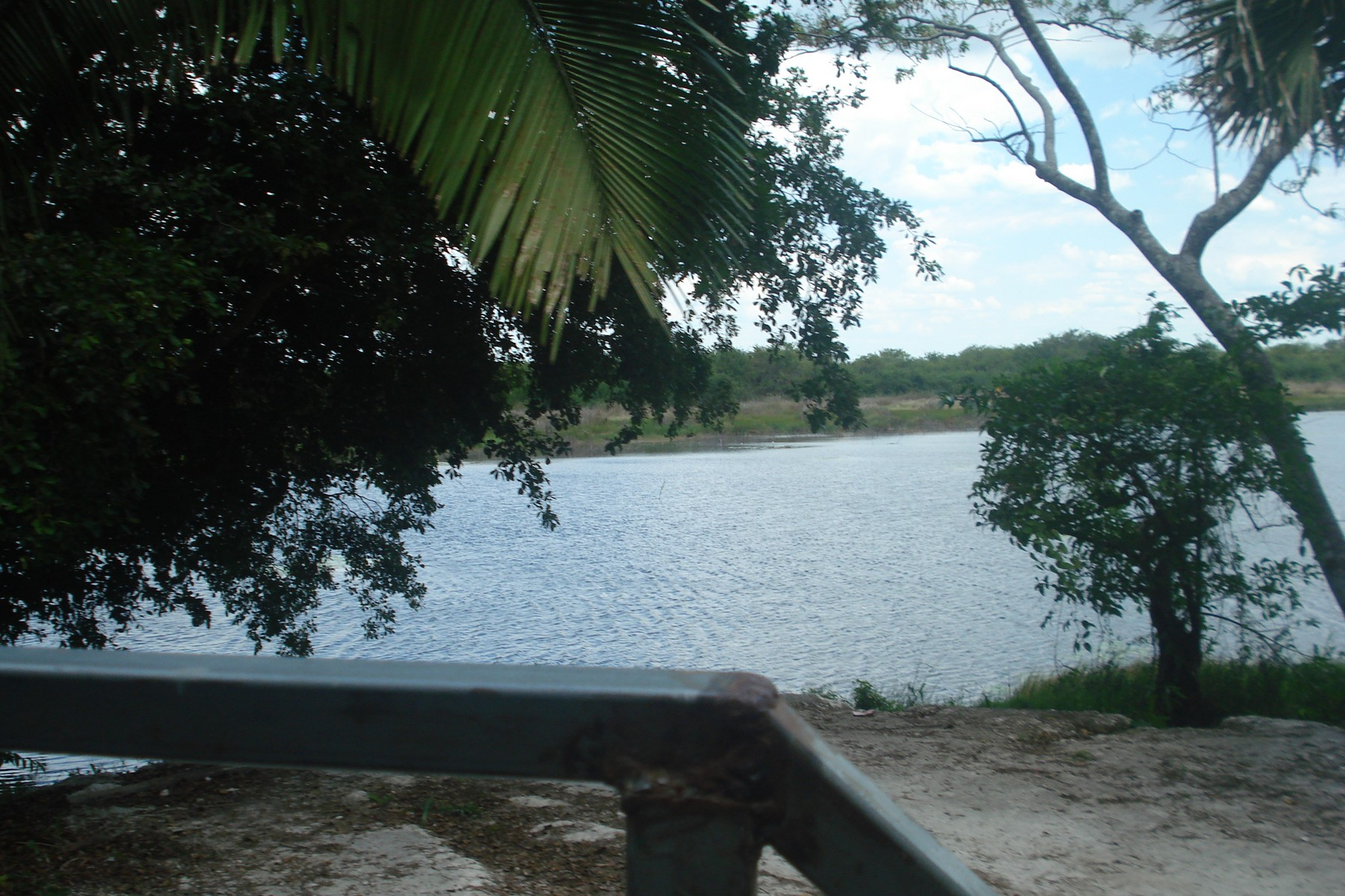 Additional photo for property listing at LOT 1 IN THE HEART OF MAYAN ZONE New Loria, Othon P. Blanco Felipe Carrillo Puerto, Other Areas In Mexico 77160 Mexico