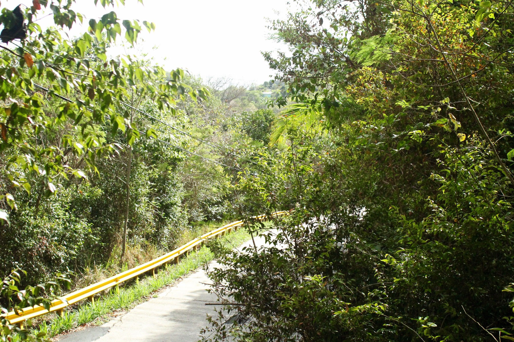 Additional photo for property listing at Mount Sage Land Lot 3 Sage Mountain, Tortola Brittiska Jungfruöarna