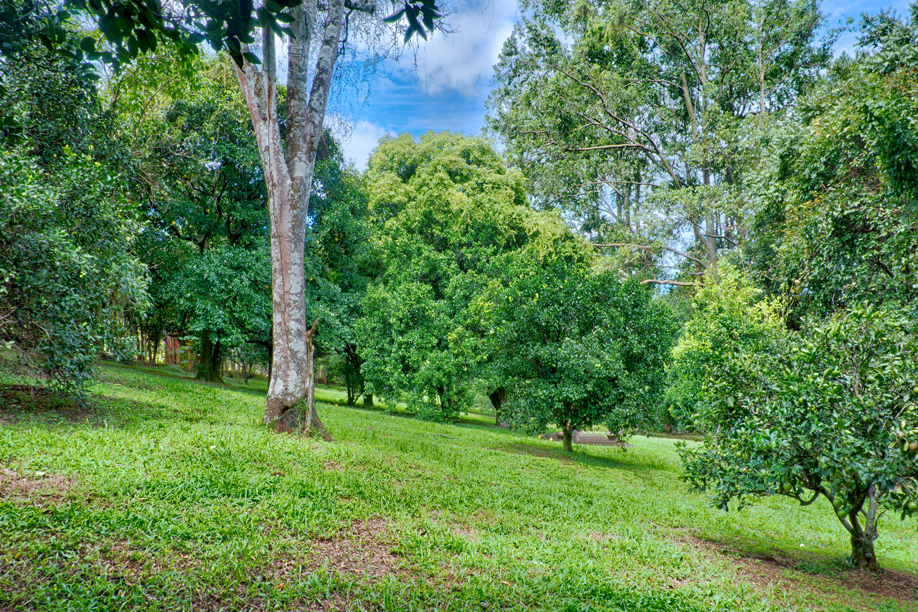 Additional photo for property listing at Terreno Piedades Santa Ana, San Jose Costa Rica