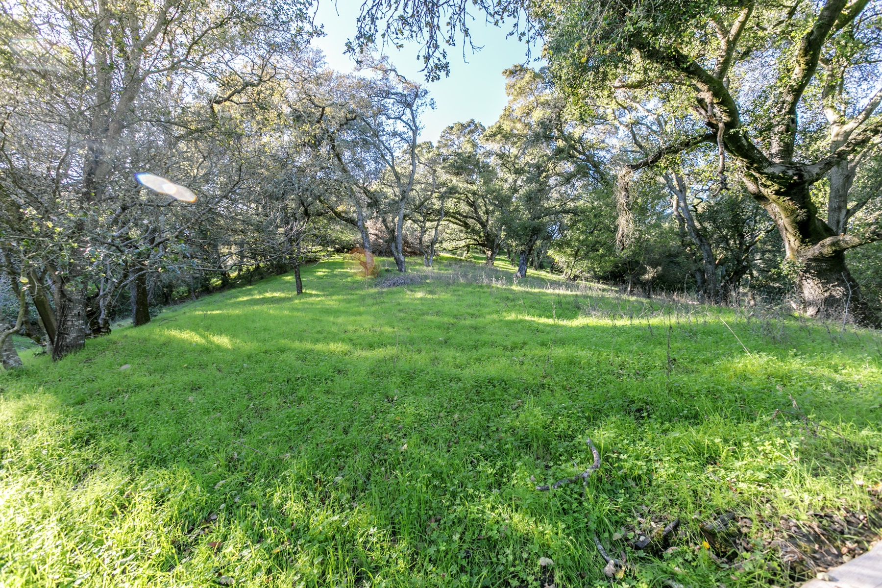 Land for Sale at Exclusive Upper Happy Valley 00 Los Arabis Lafayette, California 94549 United States
