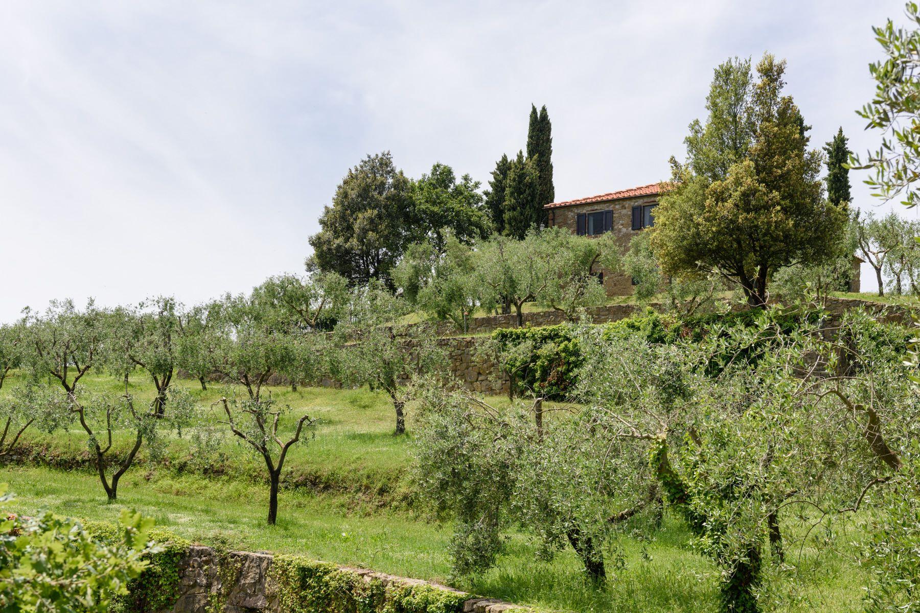 Additional photo for property listing at Country retreat in Chianti Aretino Pergine Valdarno, Arezzo Italy
