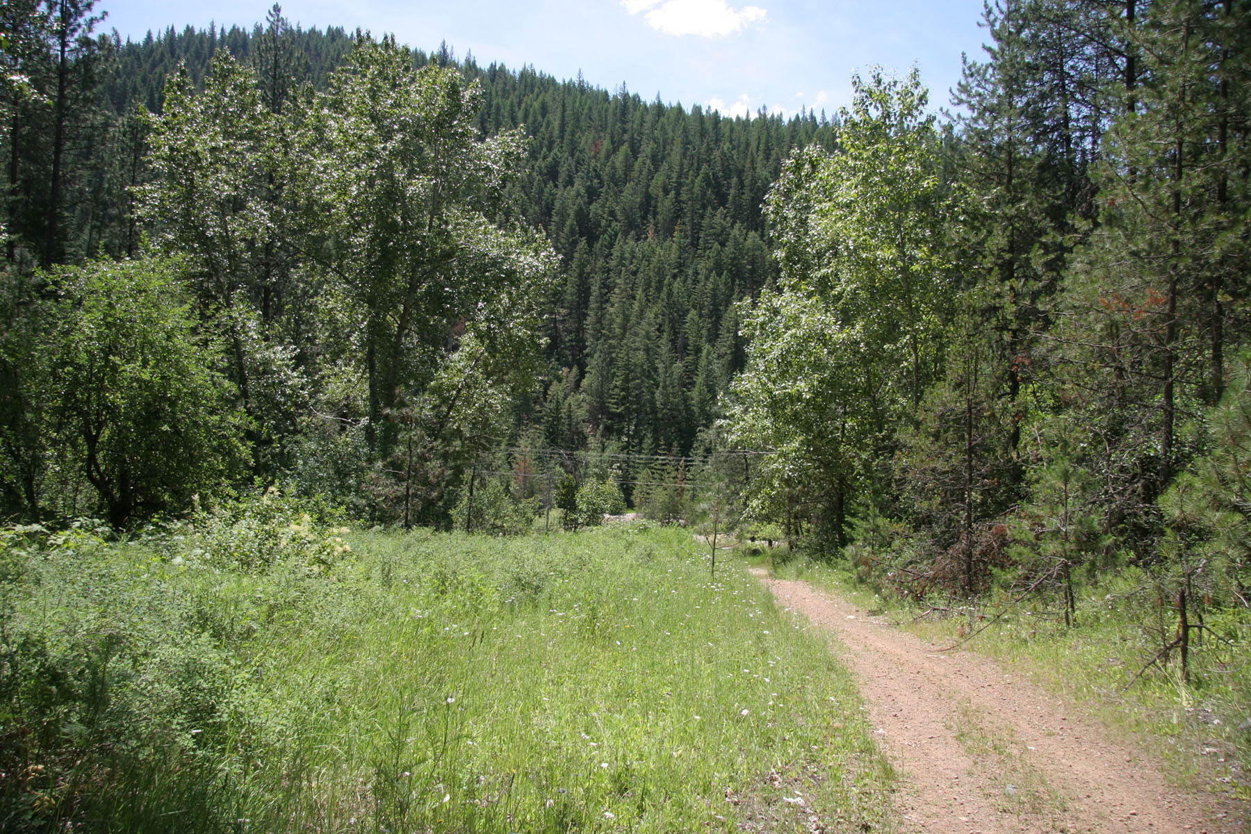 Terreno por un Venta en 14 acres overlooking the beautiful Notrh Idaho mountains NNA 4 East Fork Pine Creek Rd Pinehurst, Idaho, 83850 Estados Unidos