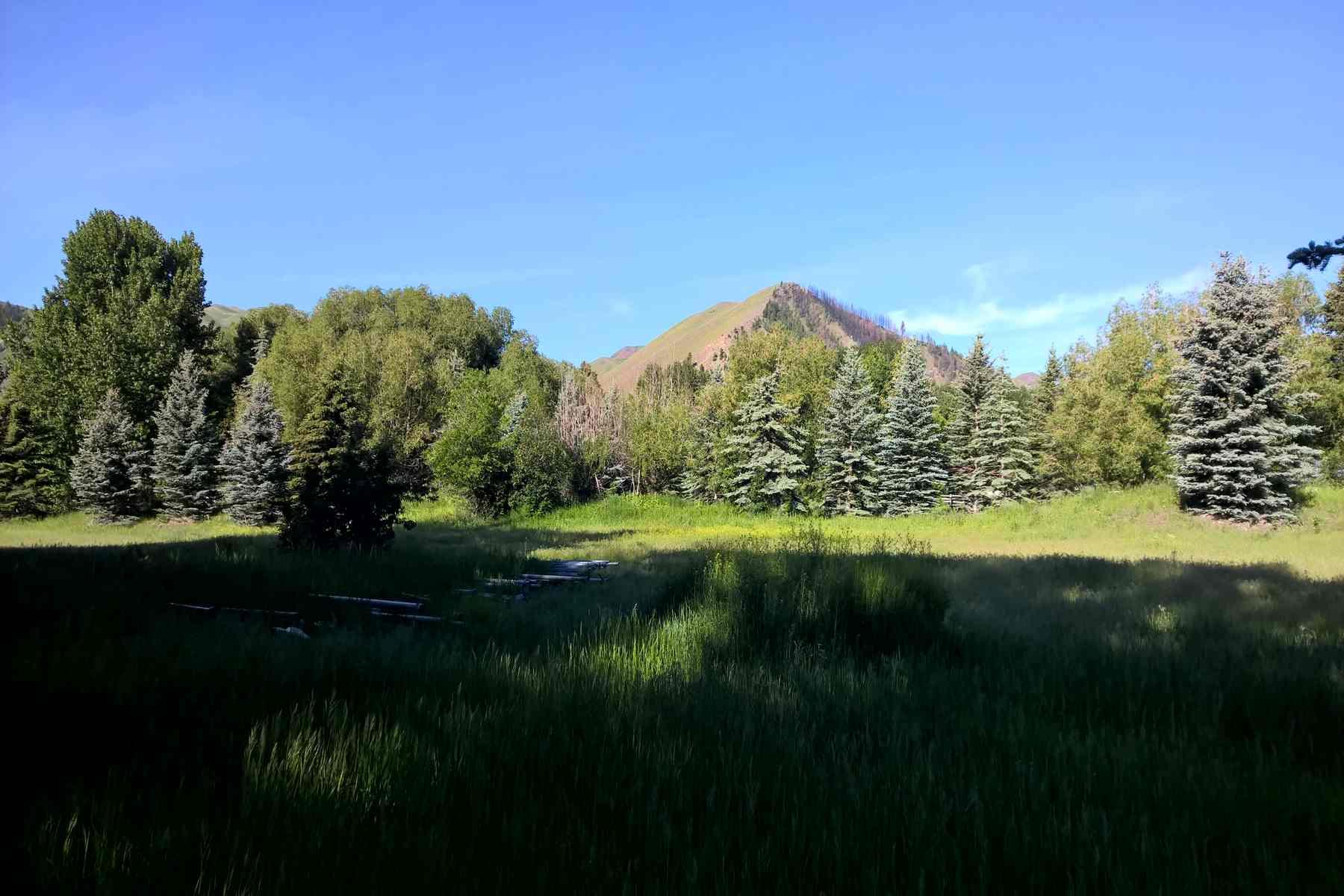 Terreno por un Venta en Beautiful Vacant Lot 105 Deer Valley Lane Hailey, Idaho 83333 Estados Unidos