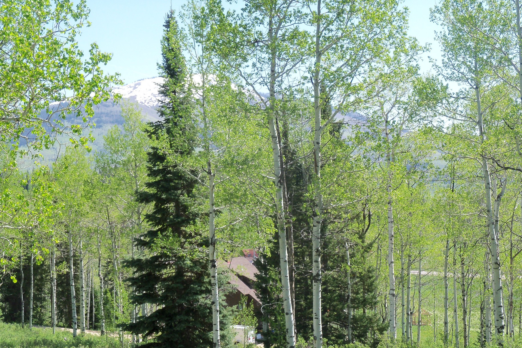 Terrain pour l Vente à Elk Horn Lot 59315 Cripple Creek Court Clark, Colorado, 80428 États-Unis