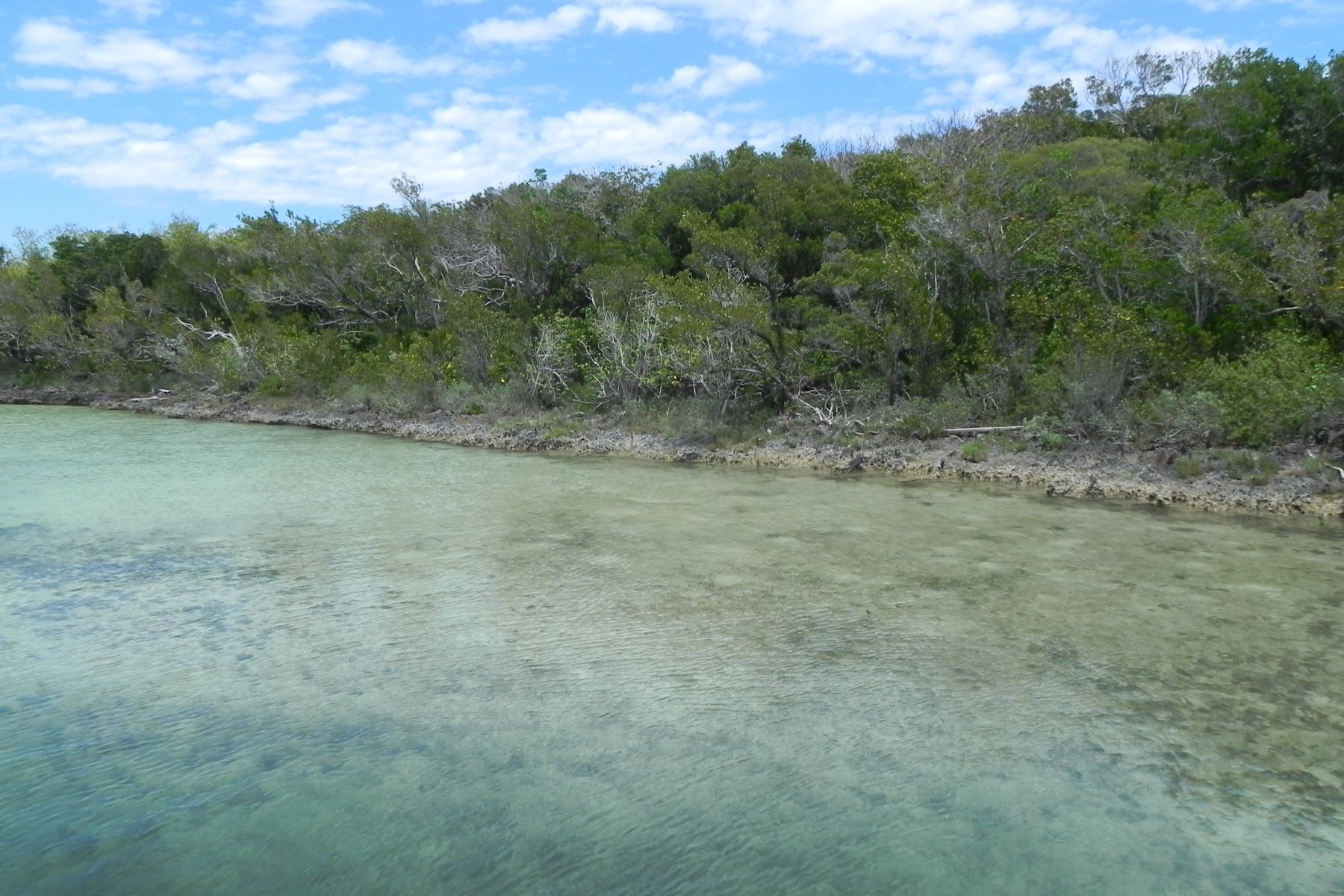 Additional photo for property listing at Centreline Road Parcel Elbow Cay Hope Town, Abaco Bahamas