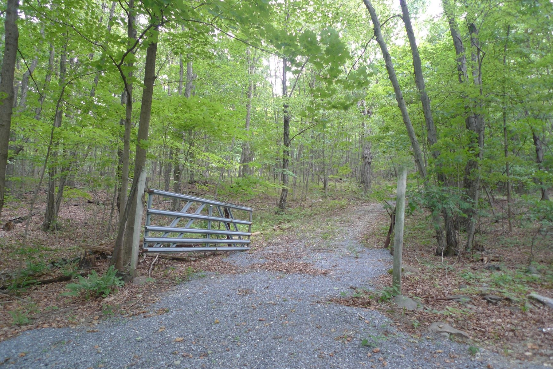 Terrain pour l Vente à Wooded & Private Mountainside 2886 Pleasant Ridge Road Dover Plains, New York 12594 États-Unis