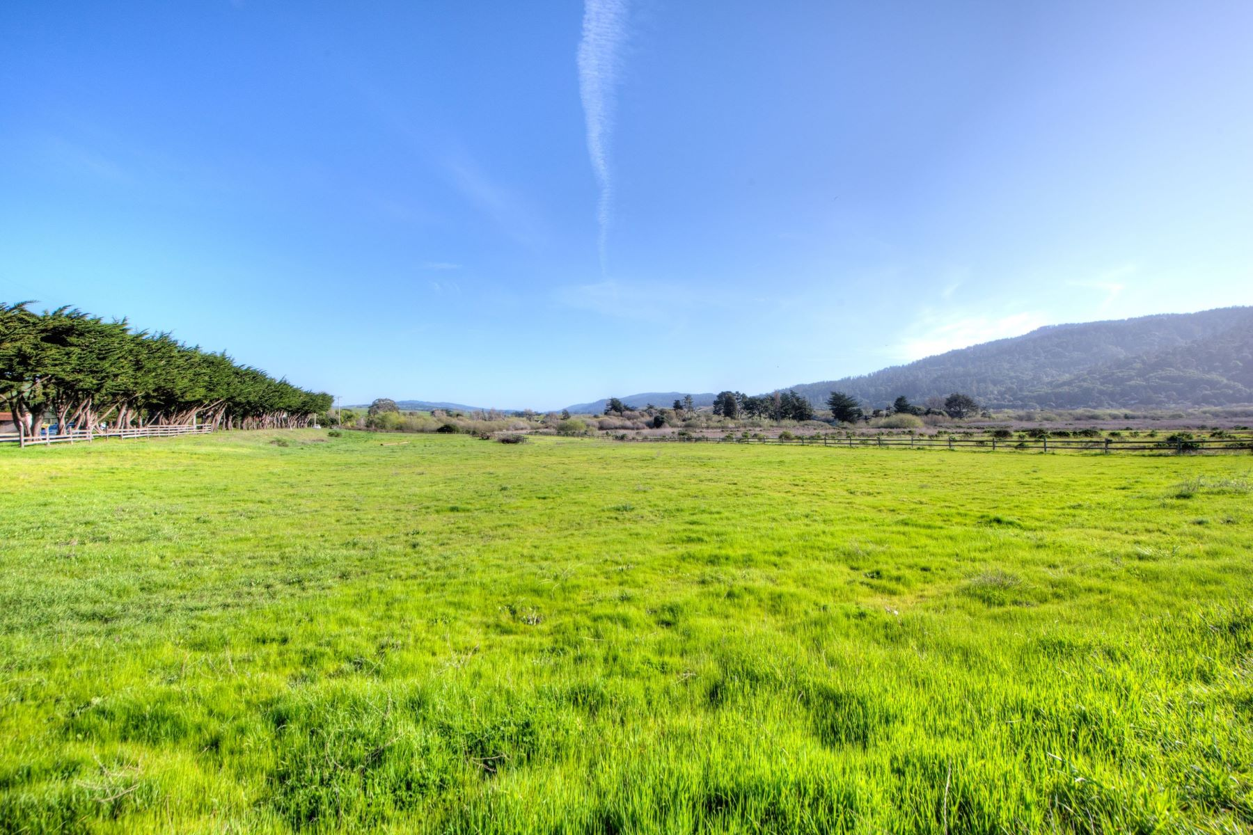 Additional photo for property listing at Iconic West Marin Property 701 C Street Point Reyes Station, カリフォルニア 94956 アメリカ合衆国
