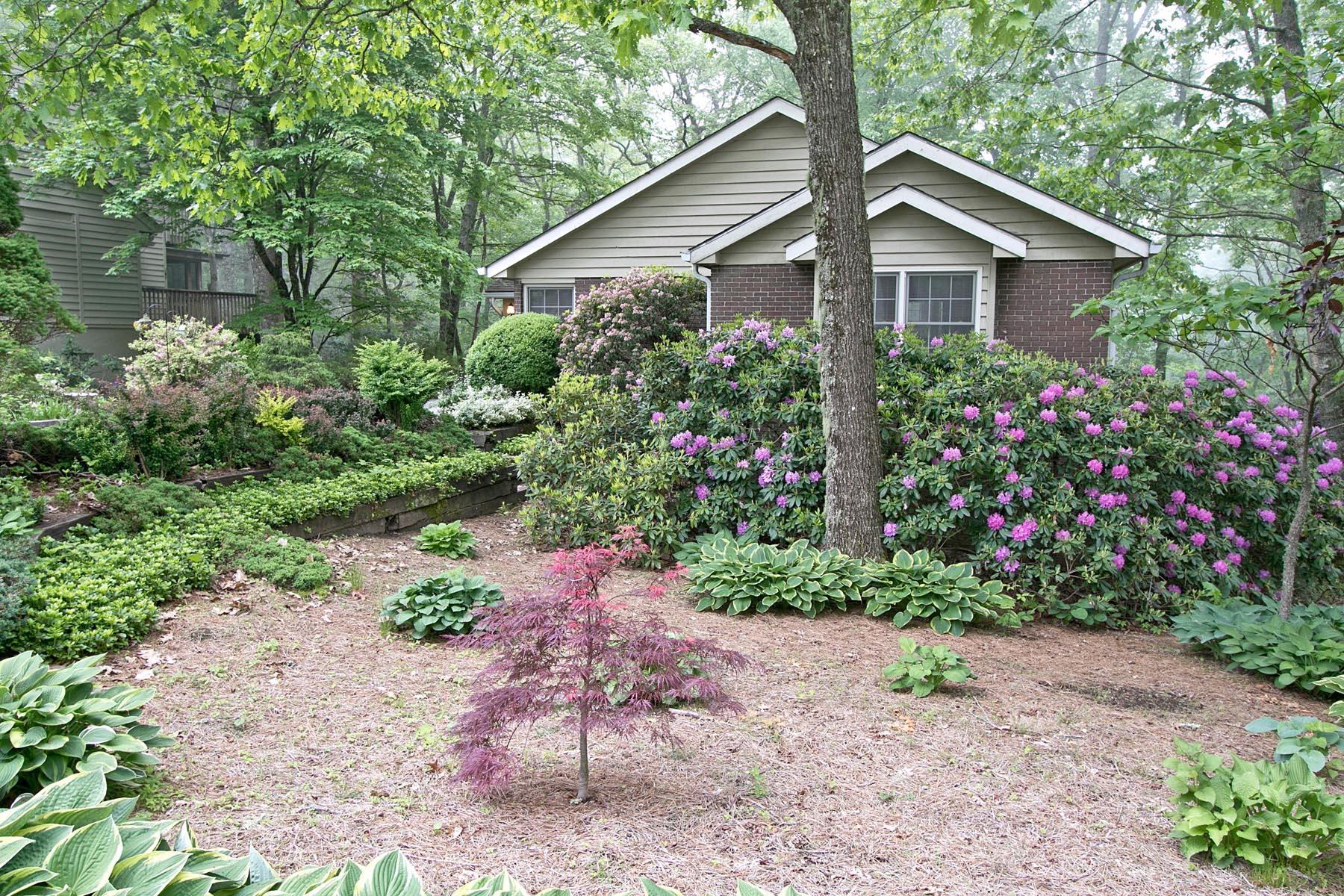 Single Family Home for Sale at 228 Shelby Circle Highlands, North Carolina, 28741 United States