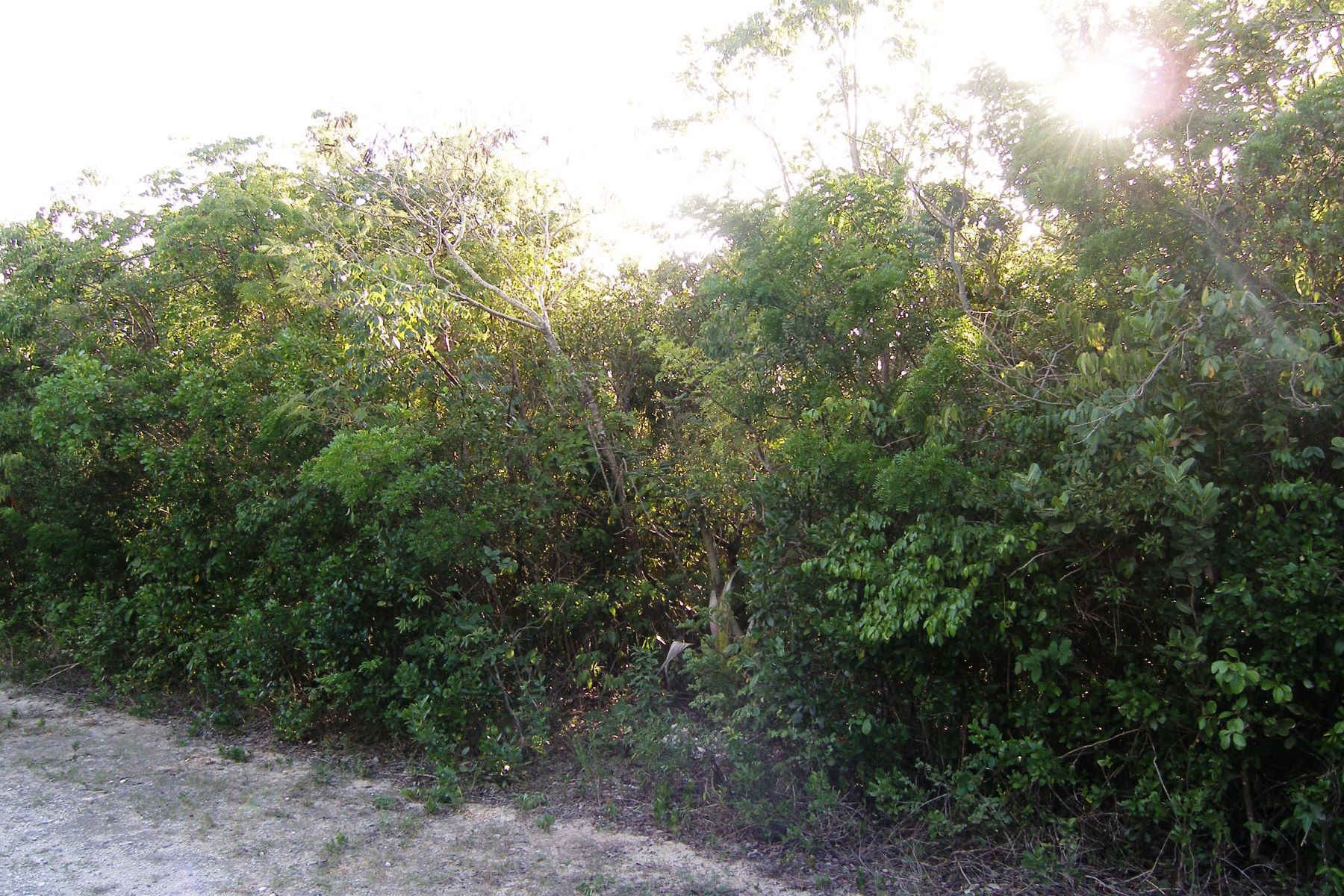 Additional photo for property listing at Rainbow Bay Residential Lot Rainbow Bay, Eleuthera Bahamas