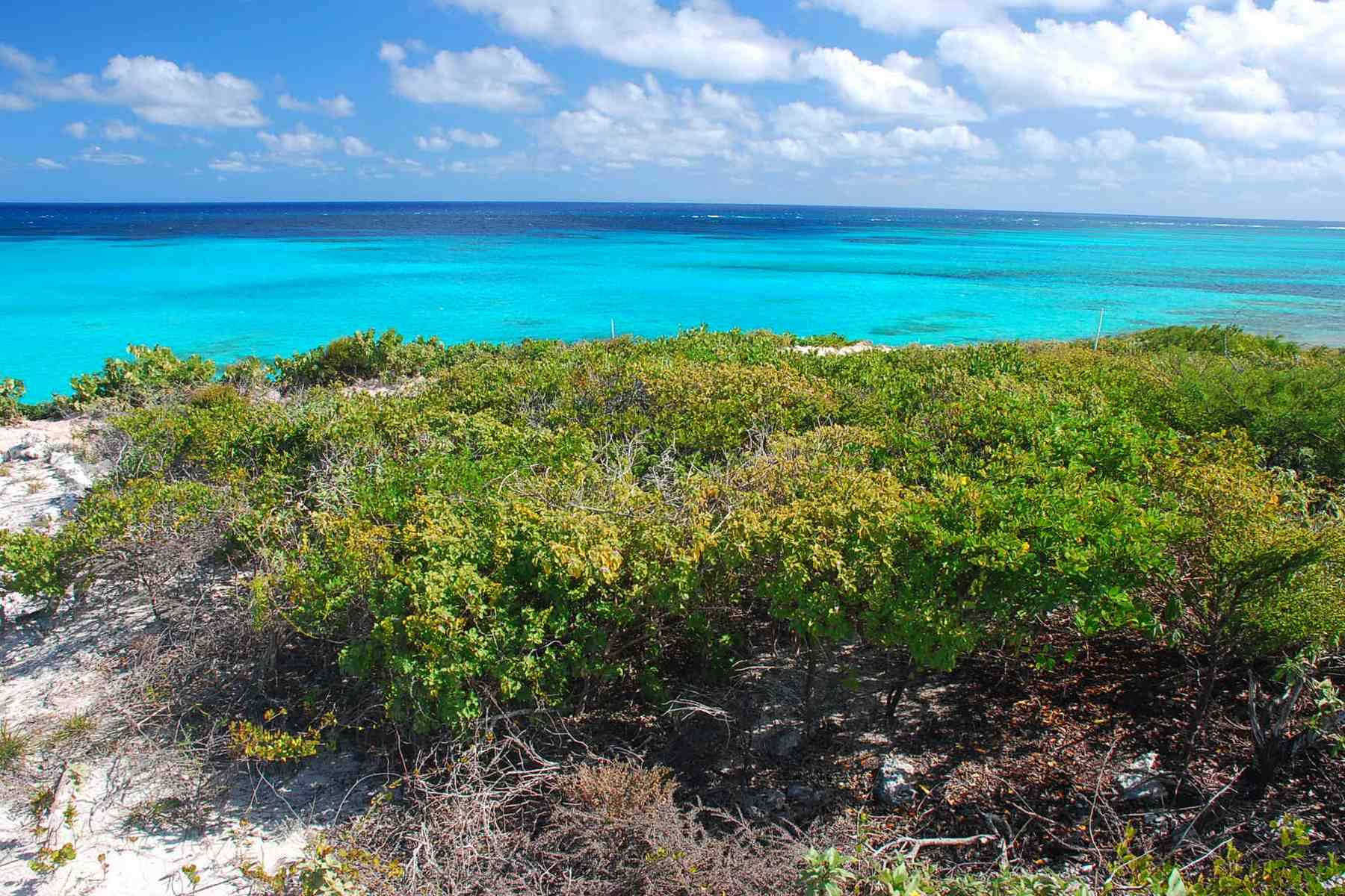 Additional photo for property listing at Oceanfront Lot 1206 Sailrock, South Caicos Теркс И Кайкос