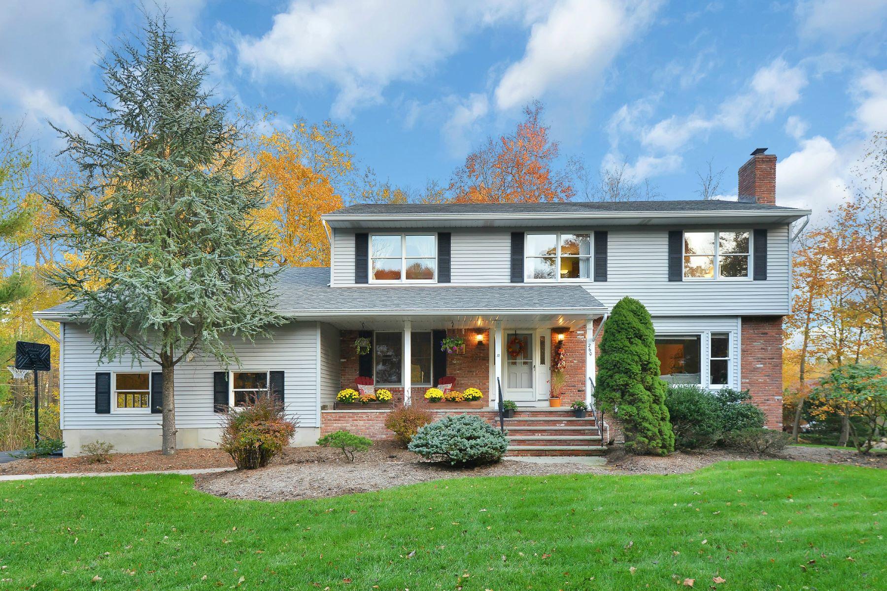 Частный односемейный дом для того Продажа на Center Hall Colonial 260 Knoll Drive Park Ridge, Нью-Джерси 07656 Соединенные Штаты
