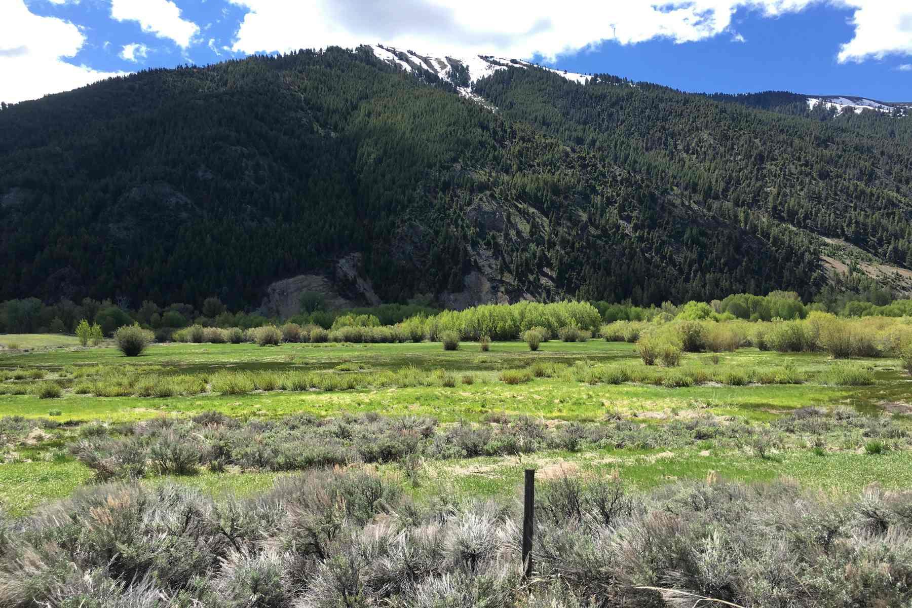 Terreno por un Venta en East Fork Land 512 East Fork Road Hailey, Idaho, 83333 Estados Unidos