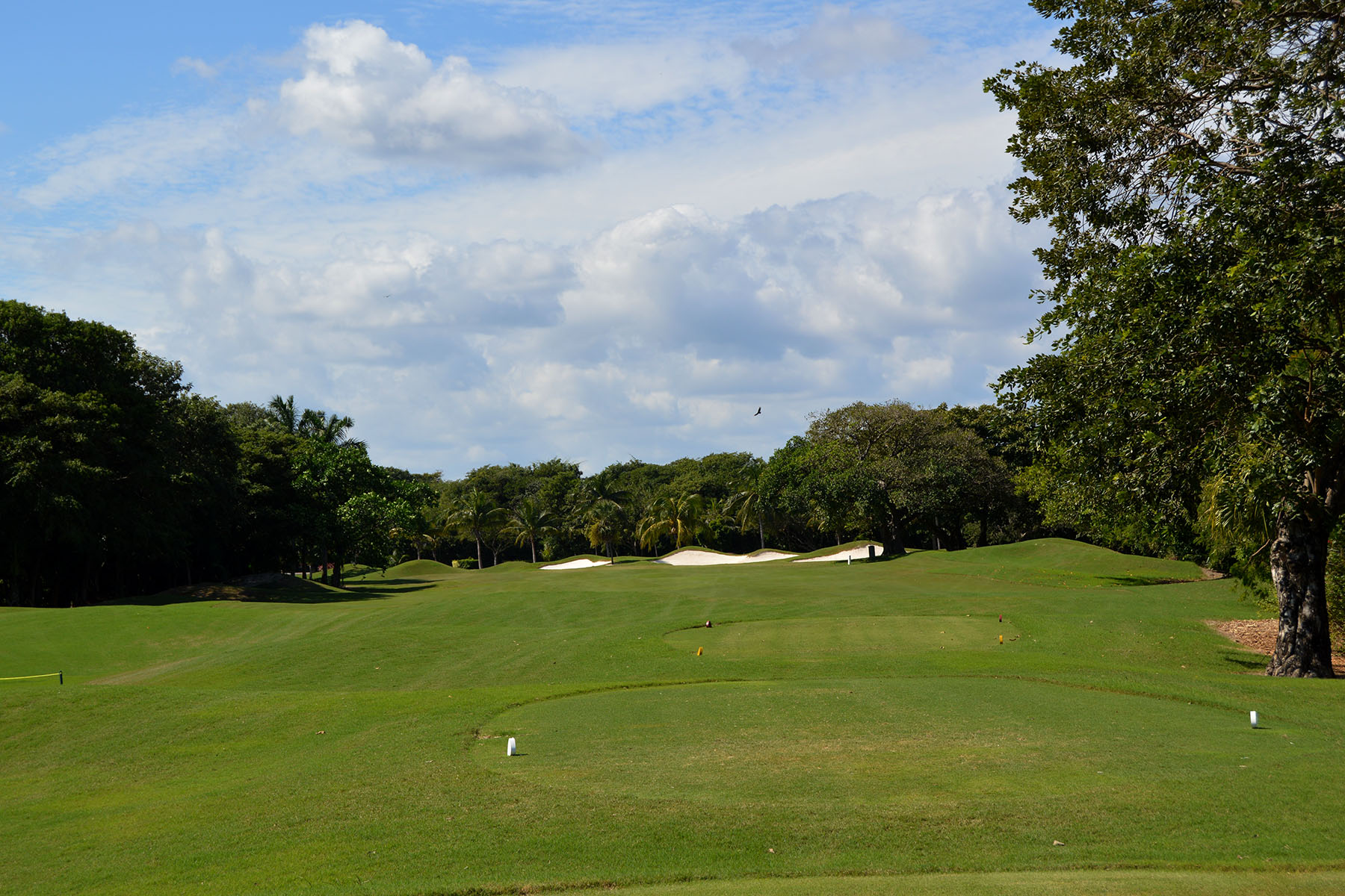 Additional photo for property listing at 107 CLUB REAL RESIDENTIAL LOT 107 Club Real Residential Lot Retorno Copan Playa Del Carmen, Quintana Roo 77710 Mexico