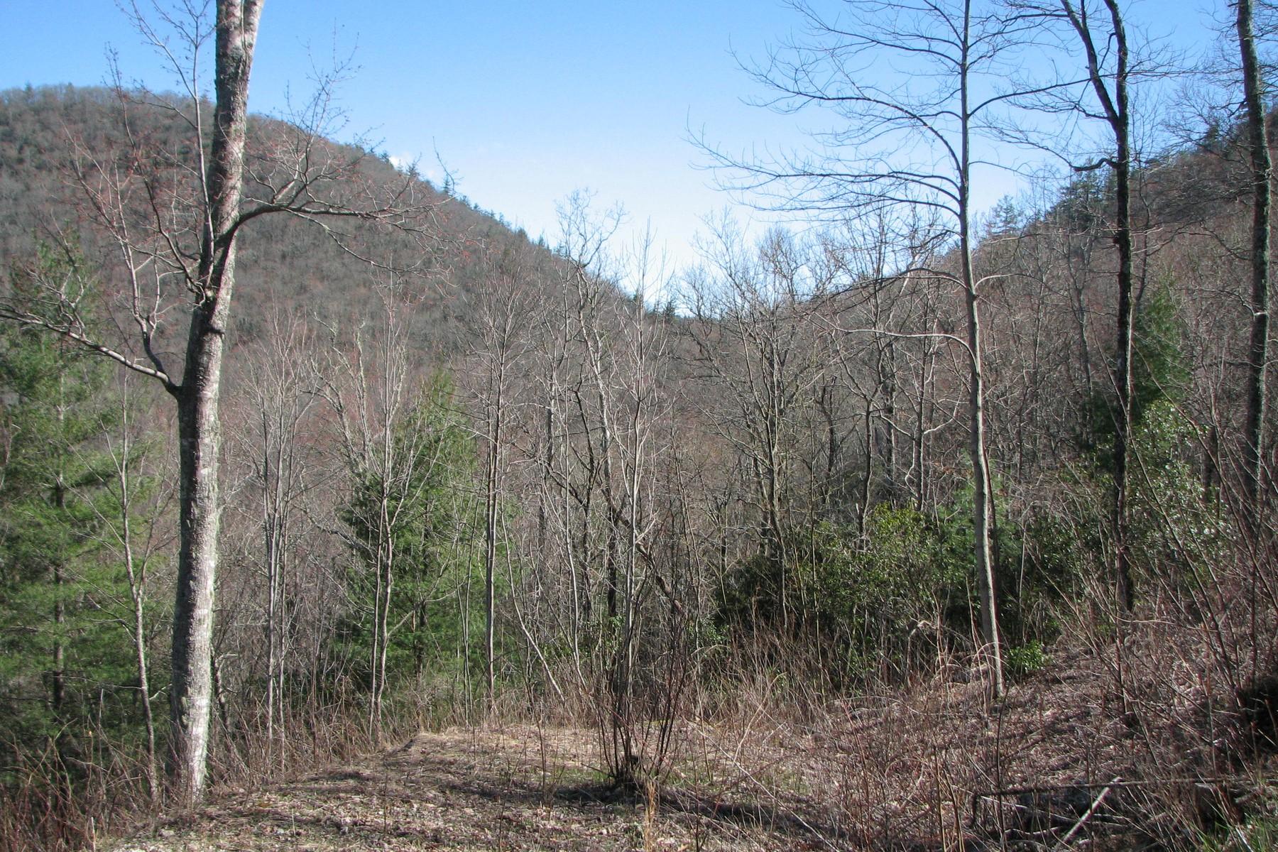 Land for Sale at The Ridges of Highlands Lot 5 Historic Highlands Drive, Highlands, North Carolina, 28741 United States