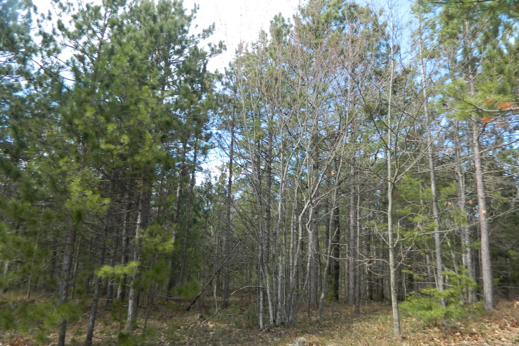 Land for Sale at Vacant Land near Sturgeon Bay Lake Shore Drive Harbor Springs, Michigan, 49740 United States
