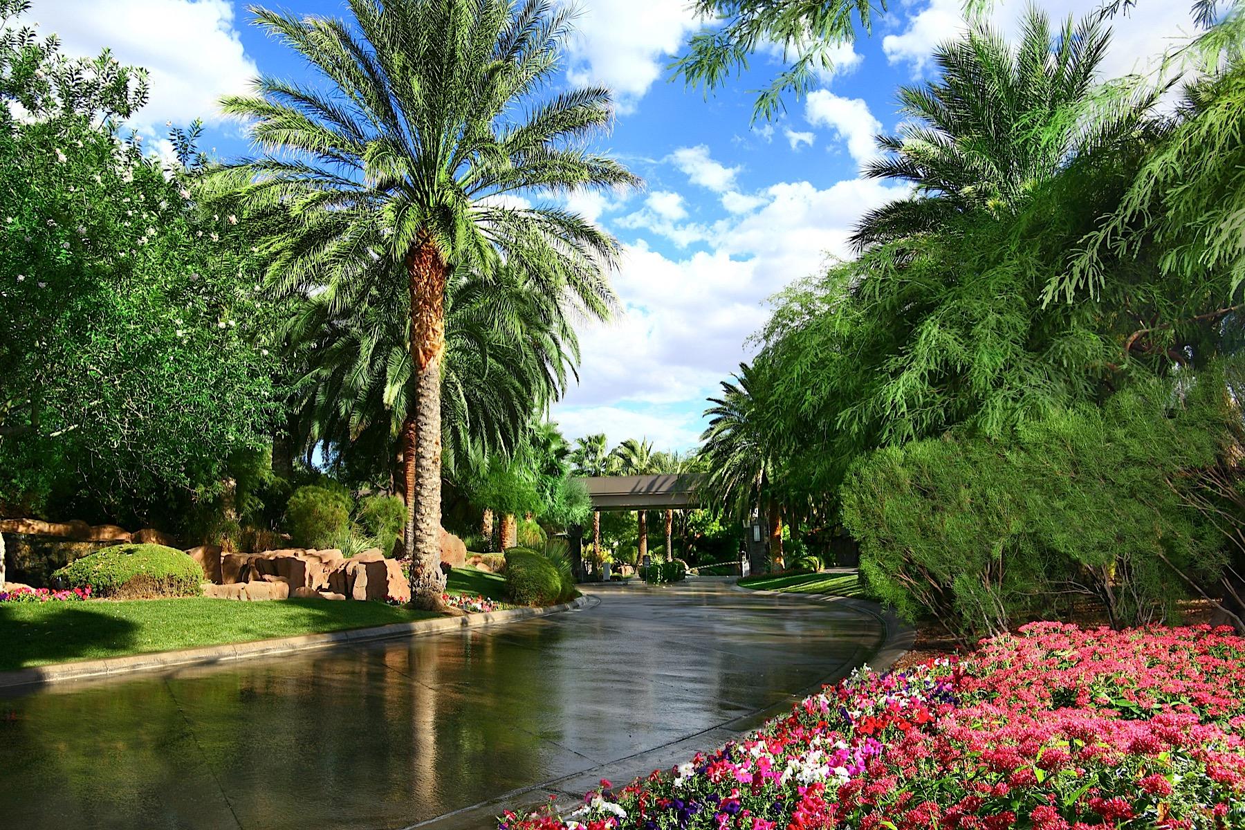 Terreno per Vendita alle ore 1205 Amber Rim Dr Henderson, Nevada, 89012 Stati Uniti