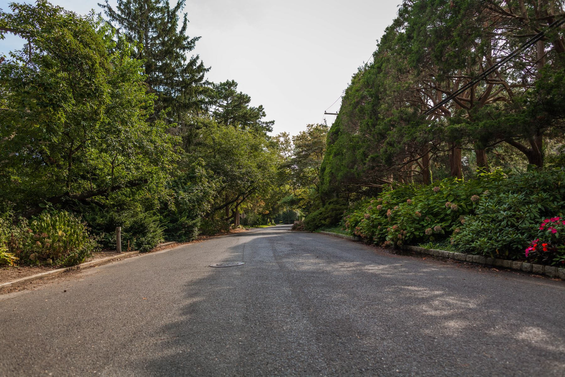Additional photo for property listing at Buildable Lot in Sea Girt Estates 2122 Butternut Rd Wall, New Jersey 08750 United States