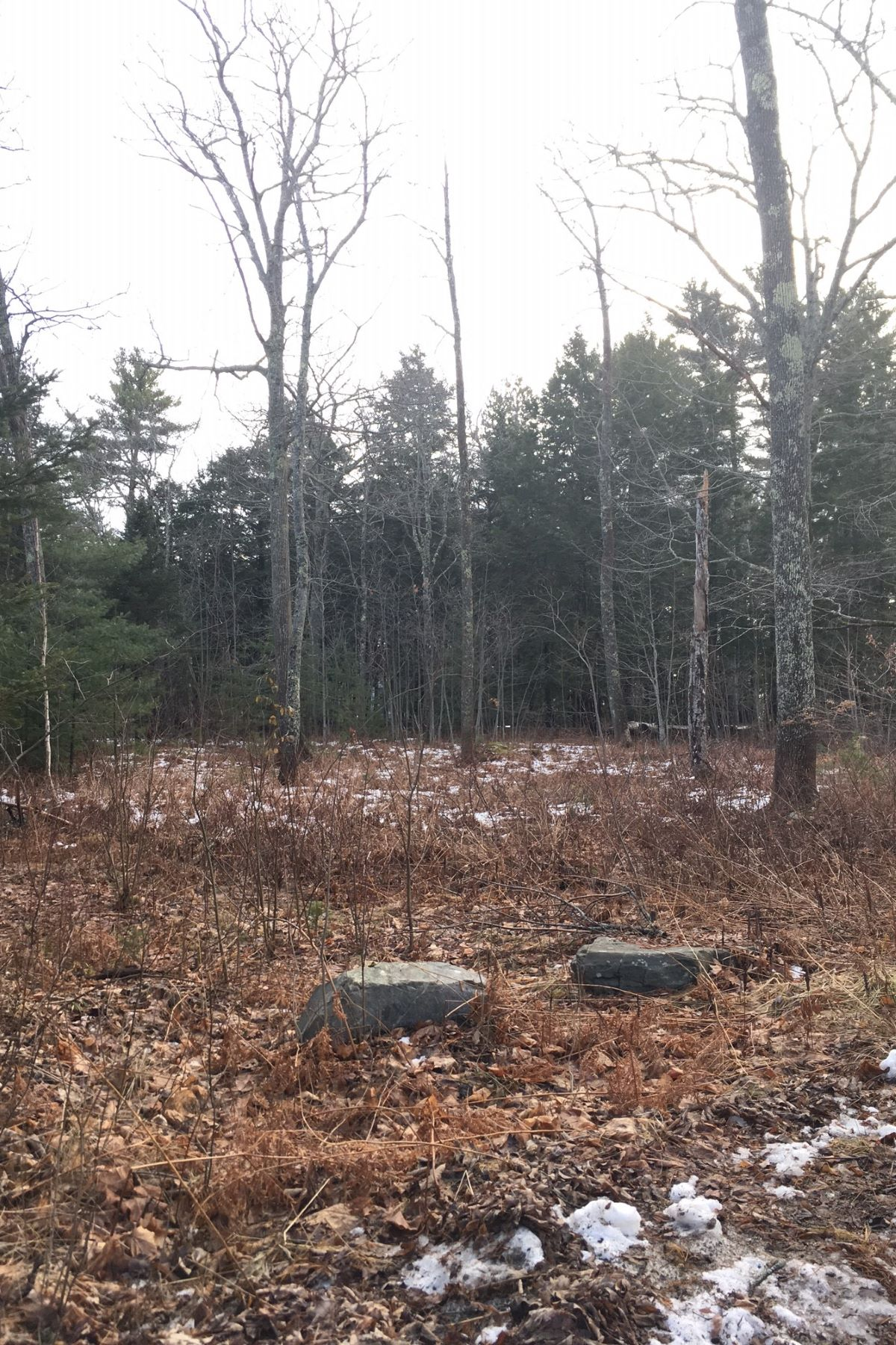 Land for Sale at 0 Timbercliffe Drive Camden, Maine, 04843 United States