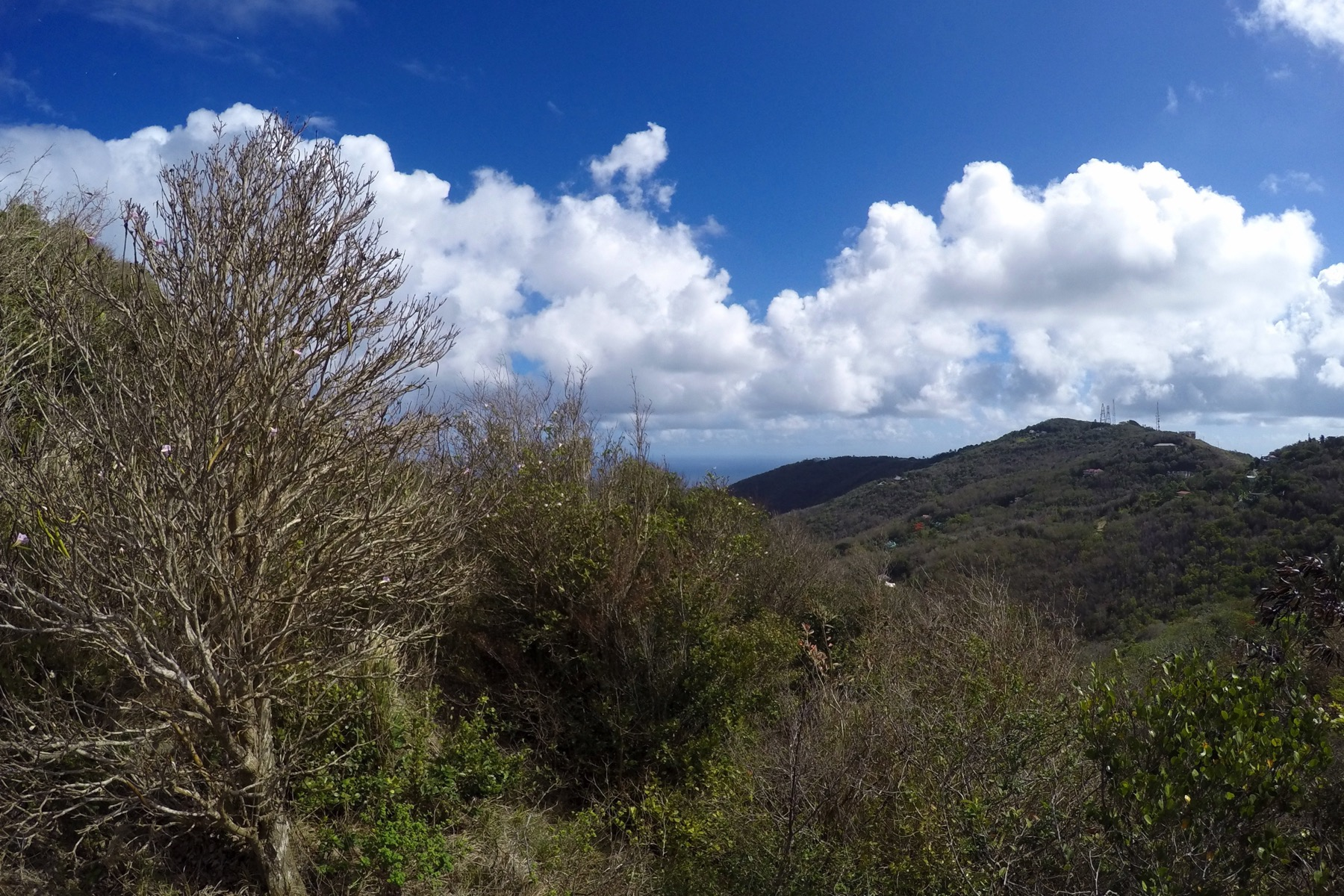 Additional photo for property listing at Mount Sage Land Lot 5 Sage Mountain, Tortola Britse Maagdeneilanden