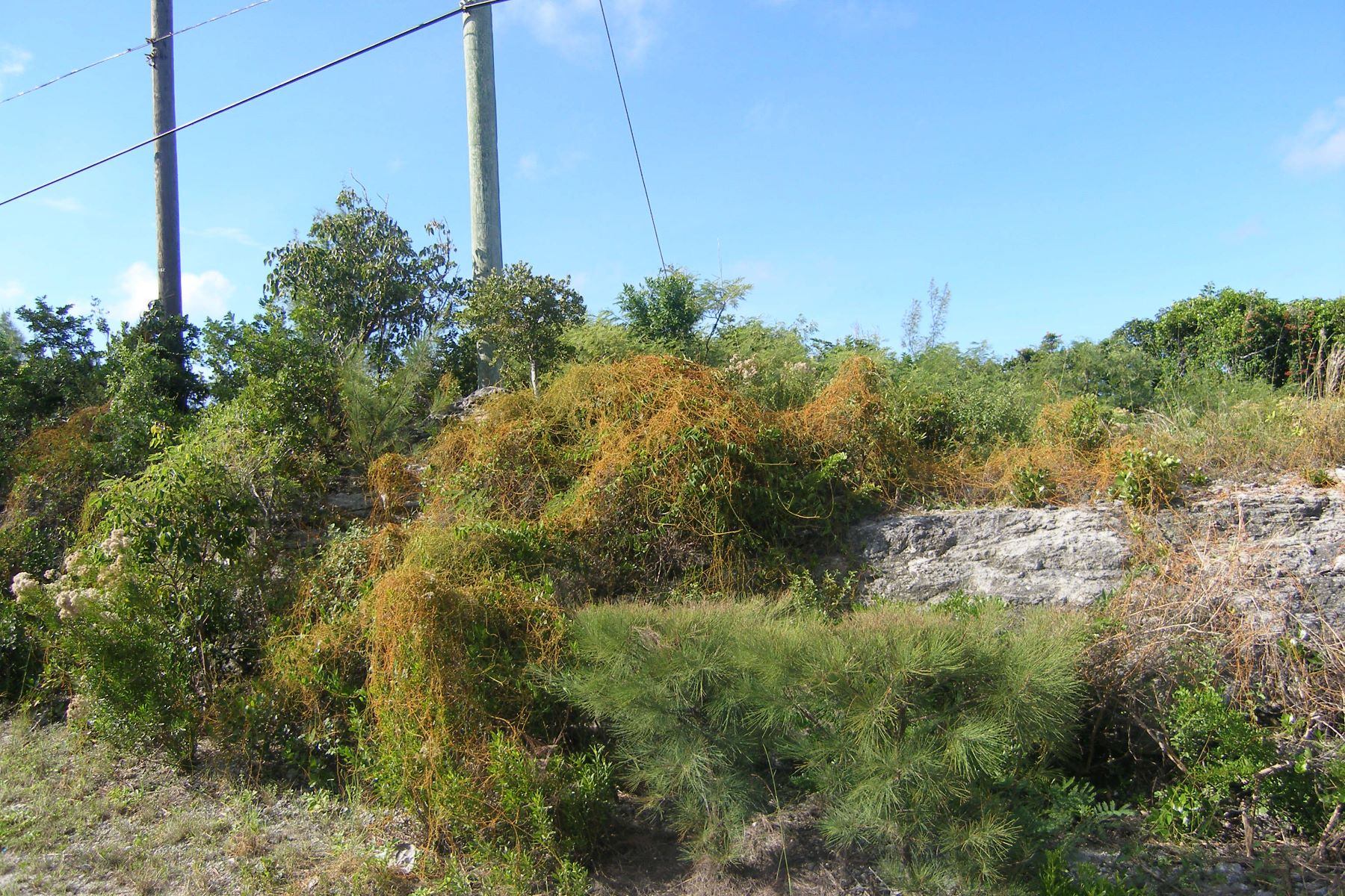 Land for Sale at Lot 3, Block 50 Section D Rainbow Bay, Eleuthera Bahamas