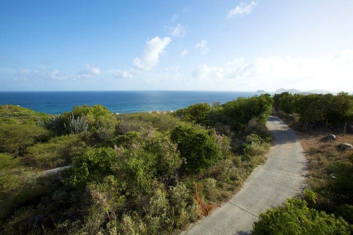 Above Crook Bay