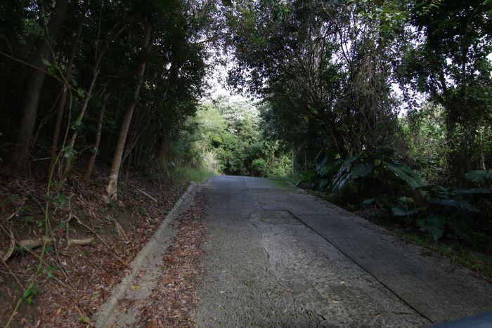 Greenbanks Land