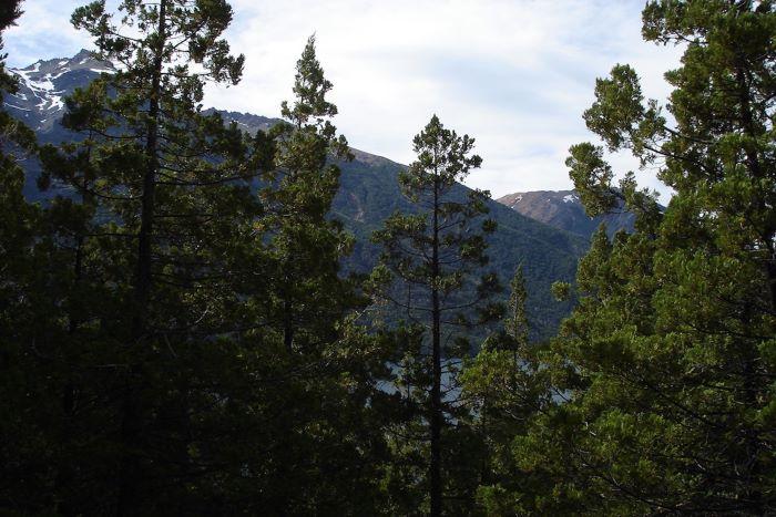 Chacras del Lago