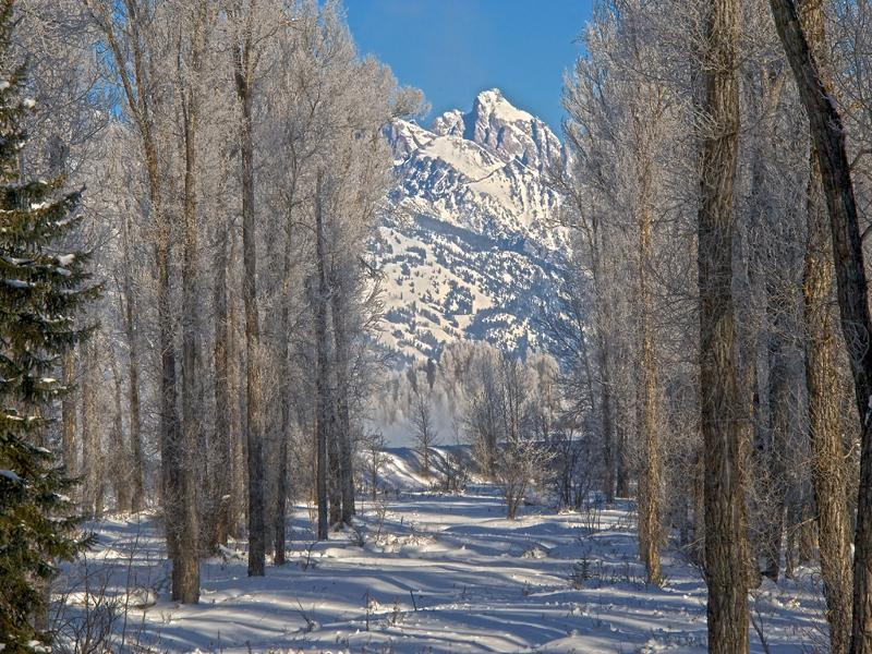 Snake River Parcel with Teton Views