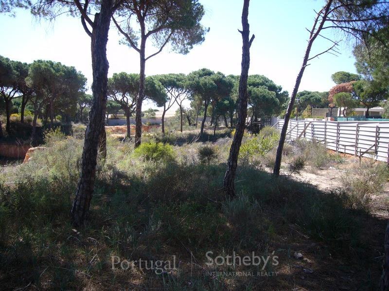 土地 为 销售 在 Real estate land for Sale Loule, 阿尔加维, 葡萄牙
