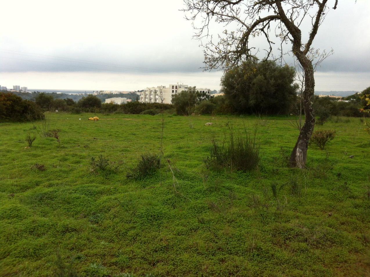 Земля для того Продажа на Terreno com ruina for Sale Portimao, Algarve Португалия