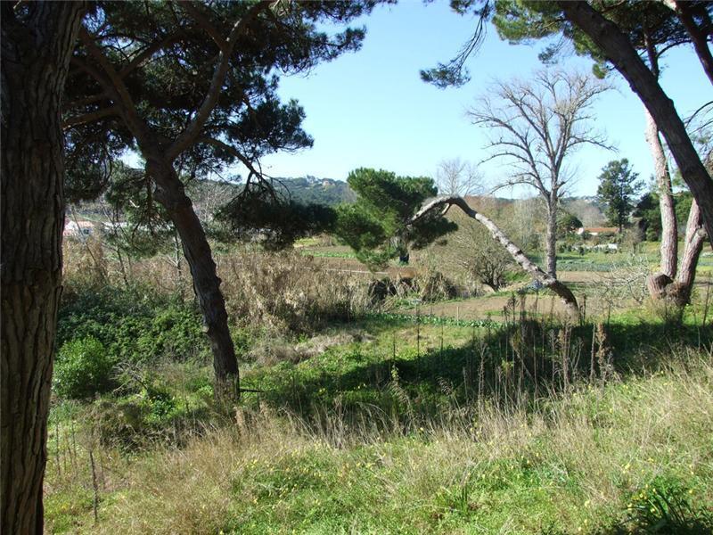 Đất đai vì Bán tại Real estate land for Sale Colares, Sintra, Lisboa Bồ Đào Nha