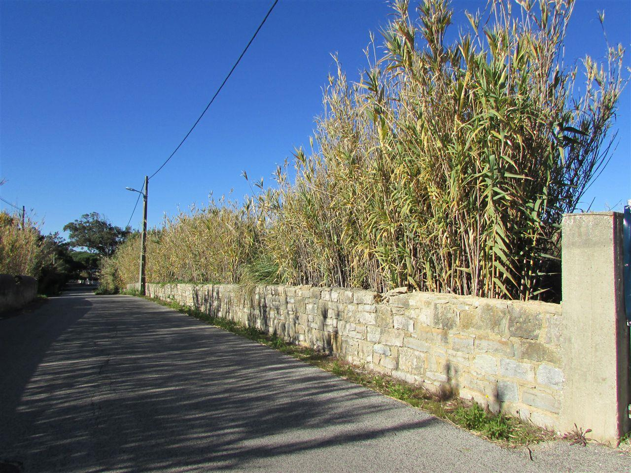 土地 のために 売買 アット Real estate land for Sale Magoito, Sintra, リスボン ポルトガル
