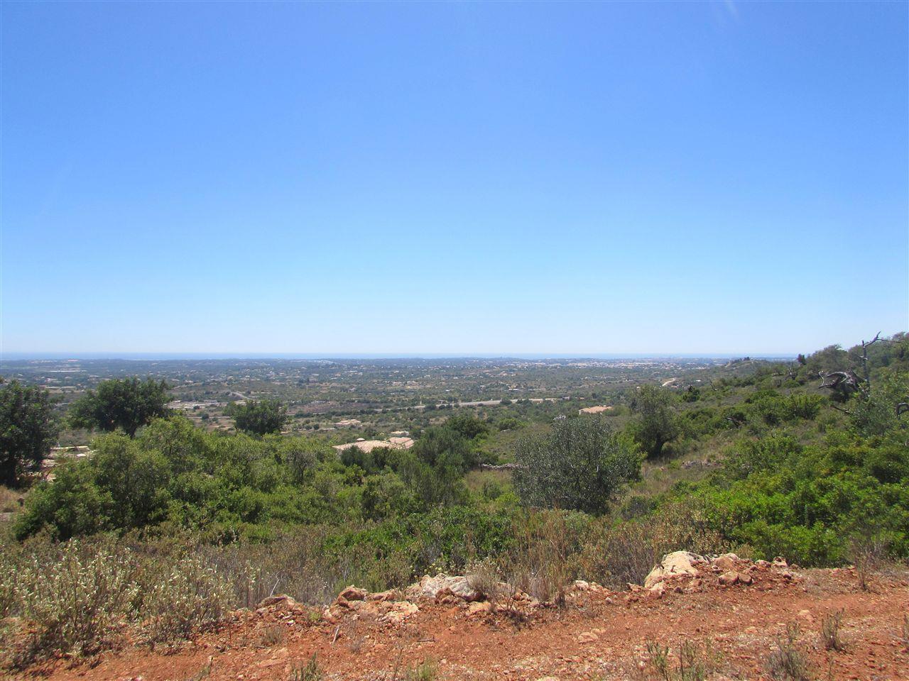 土地 のために 売買 アット Stand for Sale Faro, Algarve ポルトガル