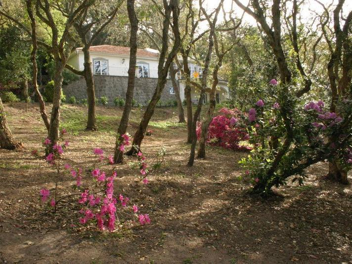 Villa per Vendita alle ore House, 6 bedrooms, for Sale Colares, Sintra, Lisbona Portogallo