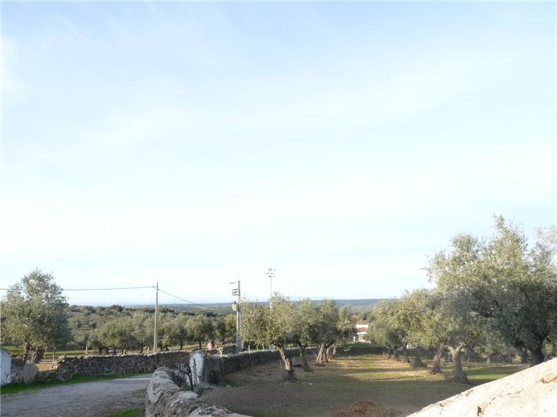 Property Of Country Estate for Sale