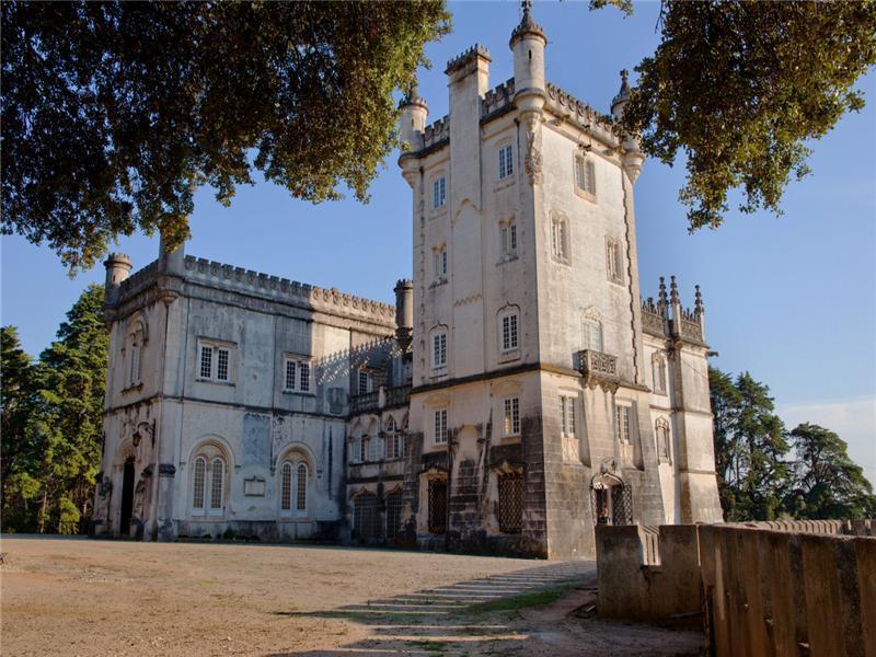 Hayvan Çiftliği/Çiftlik/Ekili Alan için Satış at Country Estate, 20 bedrooms, for Sale Torres Novas, Santarem Portekiz