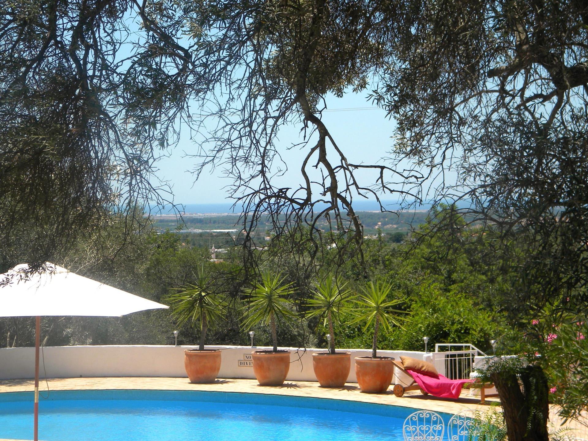 農場/牧場 / プランテーション のために 売買 アット Farm, 7 bedrooms, for Sale Faro, Algarve ポルトガル