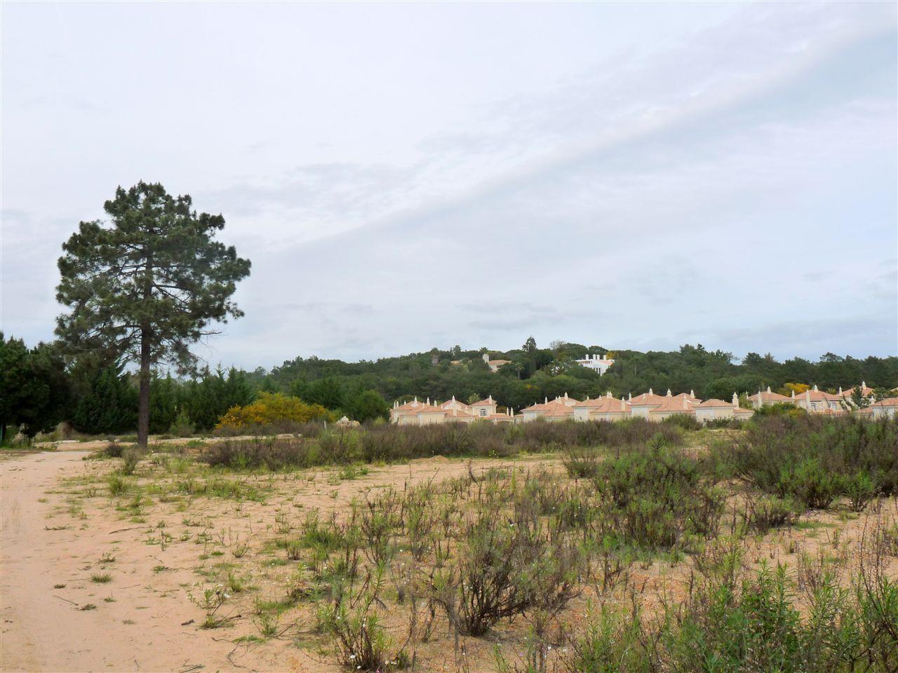 地產 為 出售 在 Stand for Sale Loule, Algarve 葡萄牙