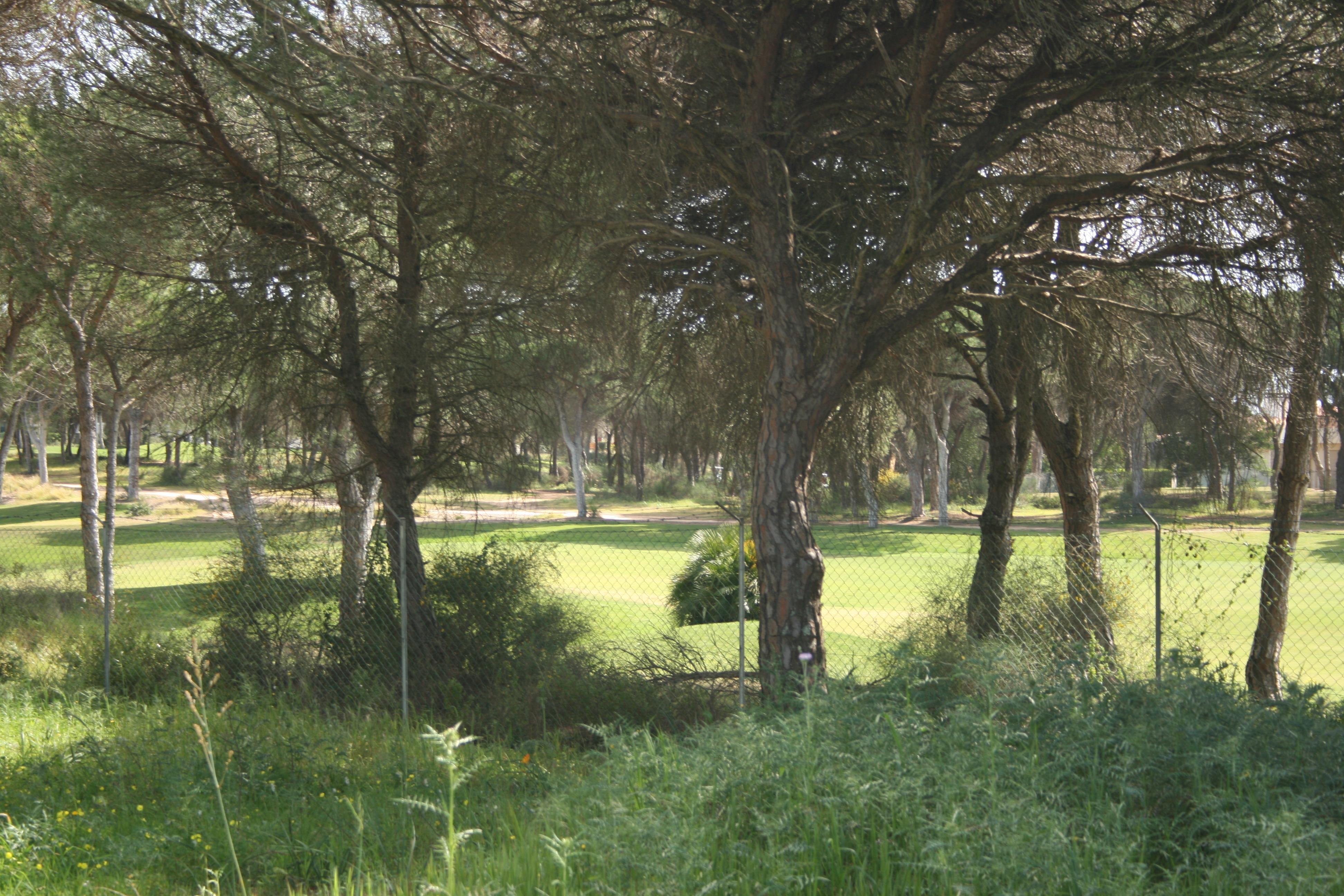 地產 為 出售 在 Stand for Sale Loule, Algarve, 8125-481 葡萄牙