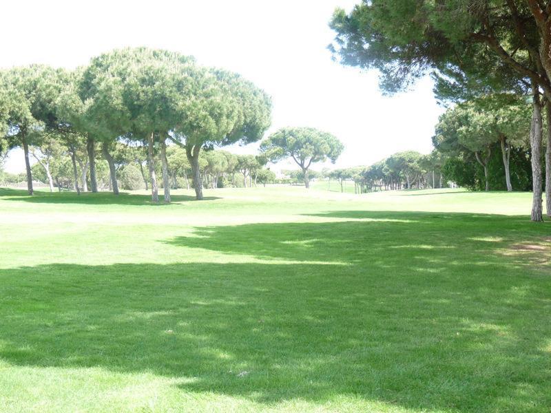 Terreno para Venda às Real estate land for Sale Loule, Algarve Portugal