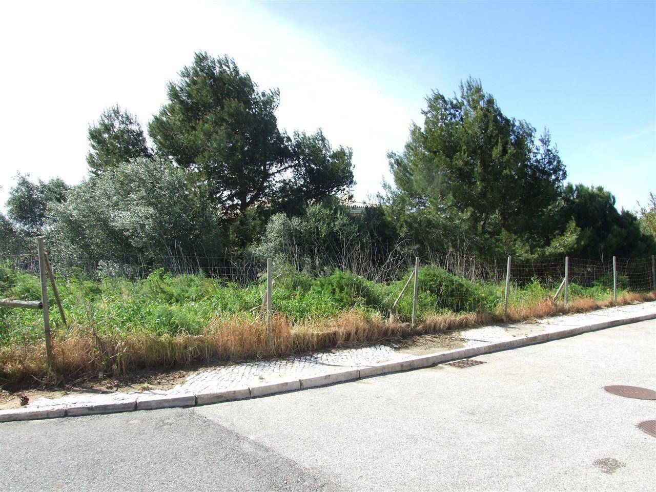 Земля для того Продажа на Real estate land for Sale Bicuda, Cascais, Лиссабон Португалия