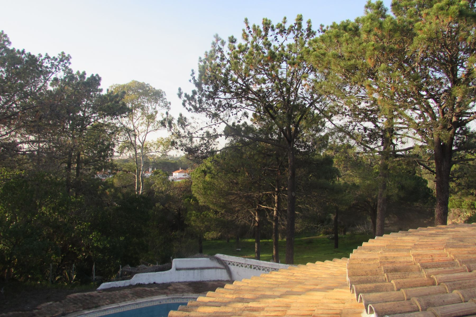 Terrain pour l à vendre à Terreno com ruina for Sale Loule, Algarve, Portugal