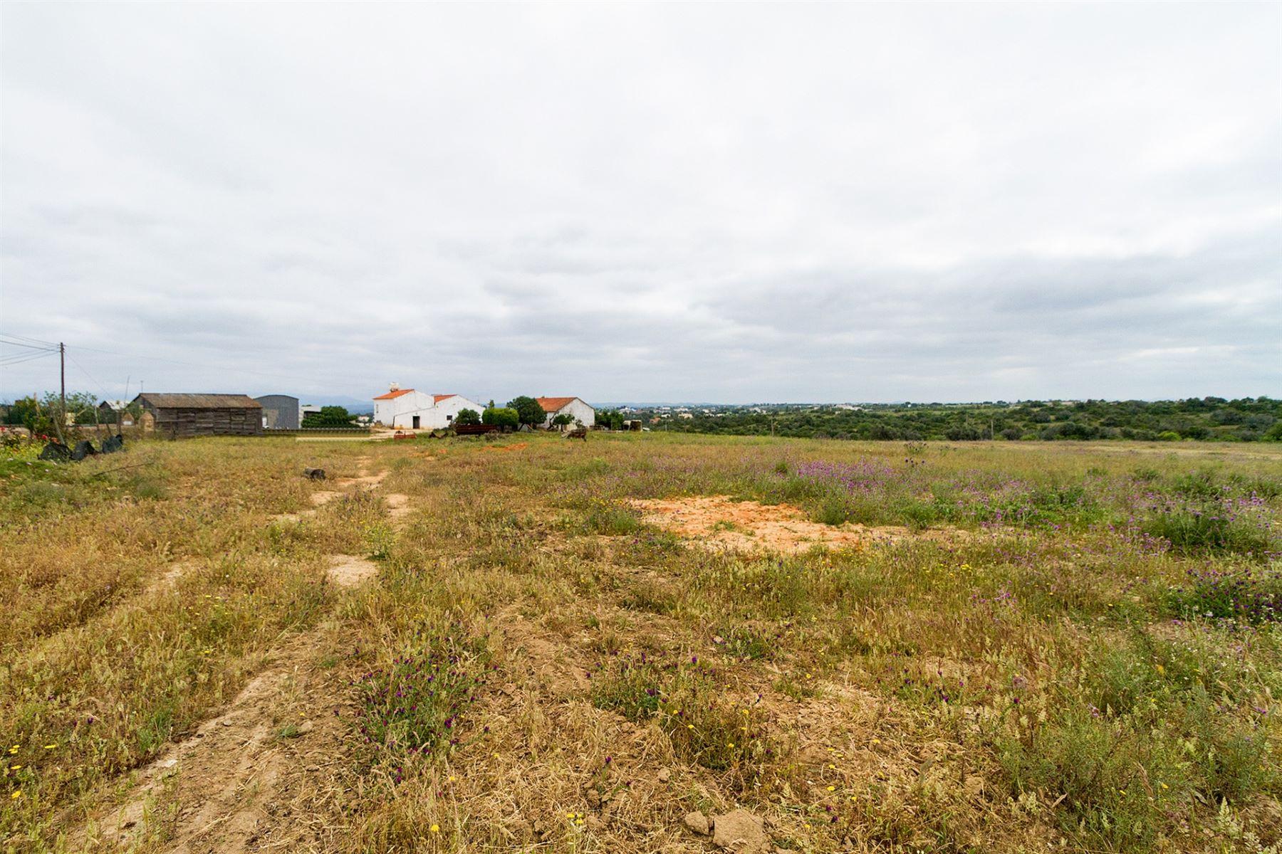 农场 / 牧场 / 种植园 为 销售 在 Farm for Sale Lagoa, 阿尔加维 葡萄牙