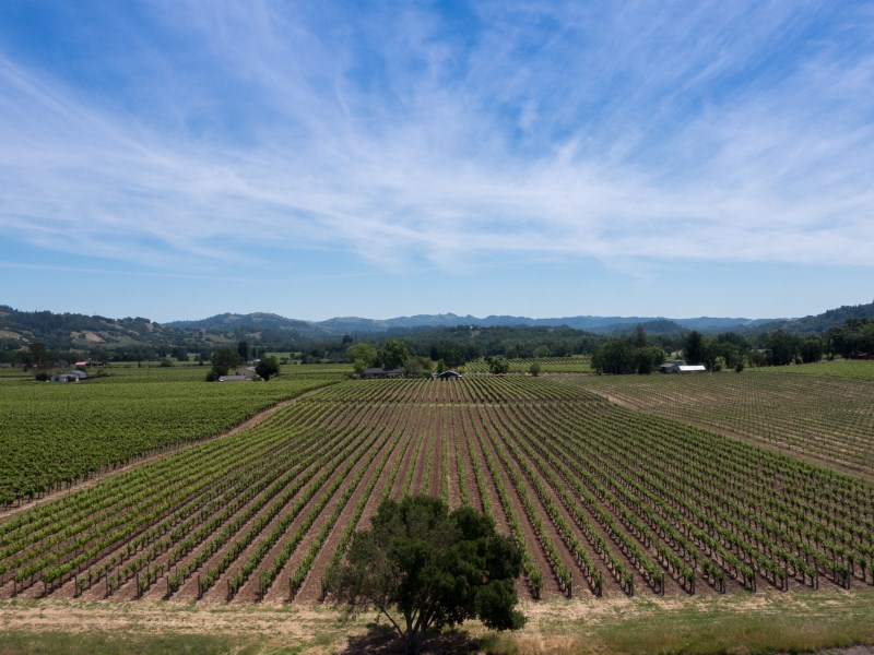 地產 為 出售 在 Rare Healdsburg Development Opportunity E. Soda Rock Lane Healdsburg, 加利福尼亞州 95448 美國