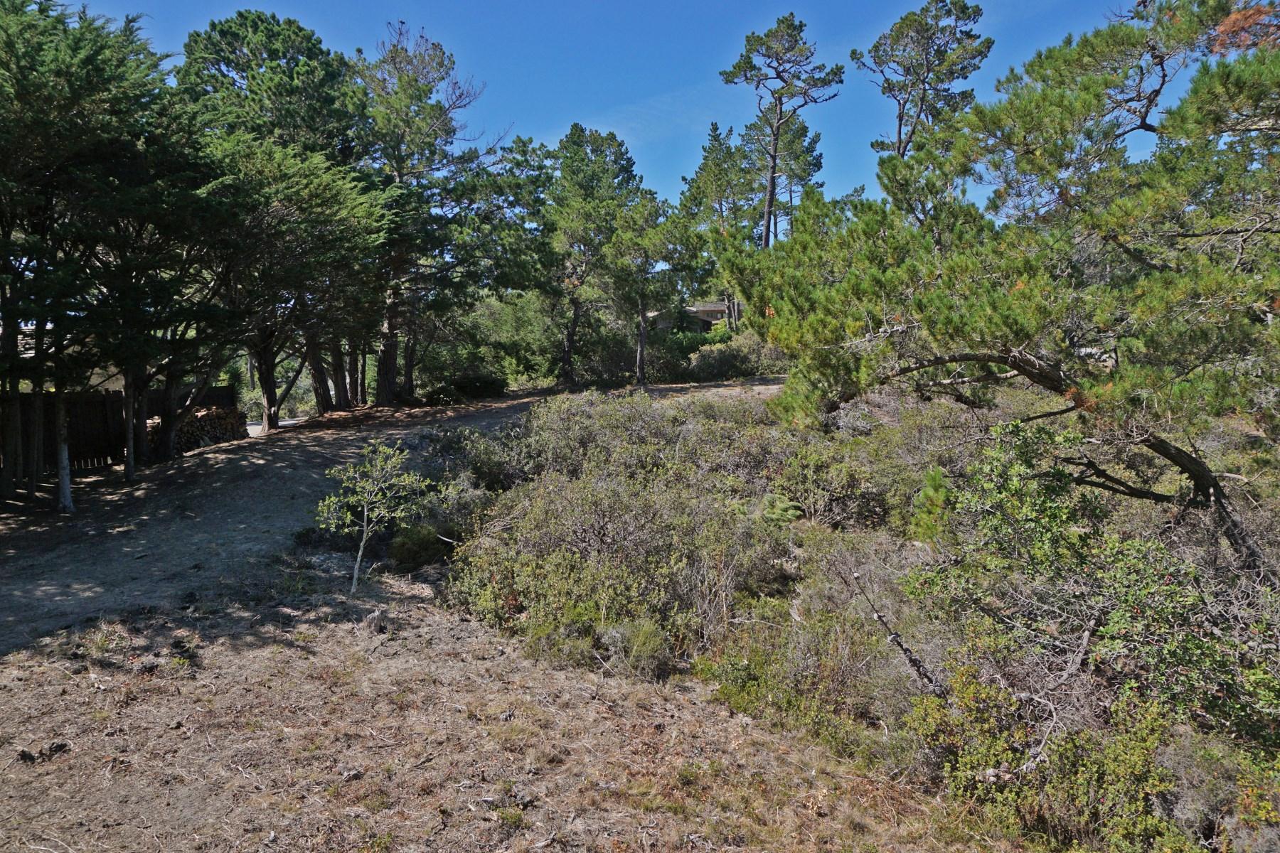Additional photo for property listing at Pebble Beach Estate Site 1634 Sonado Road Pebble Beach, California 93953 United States