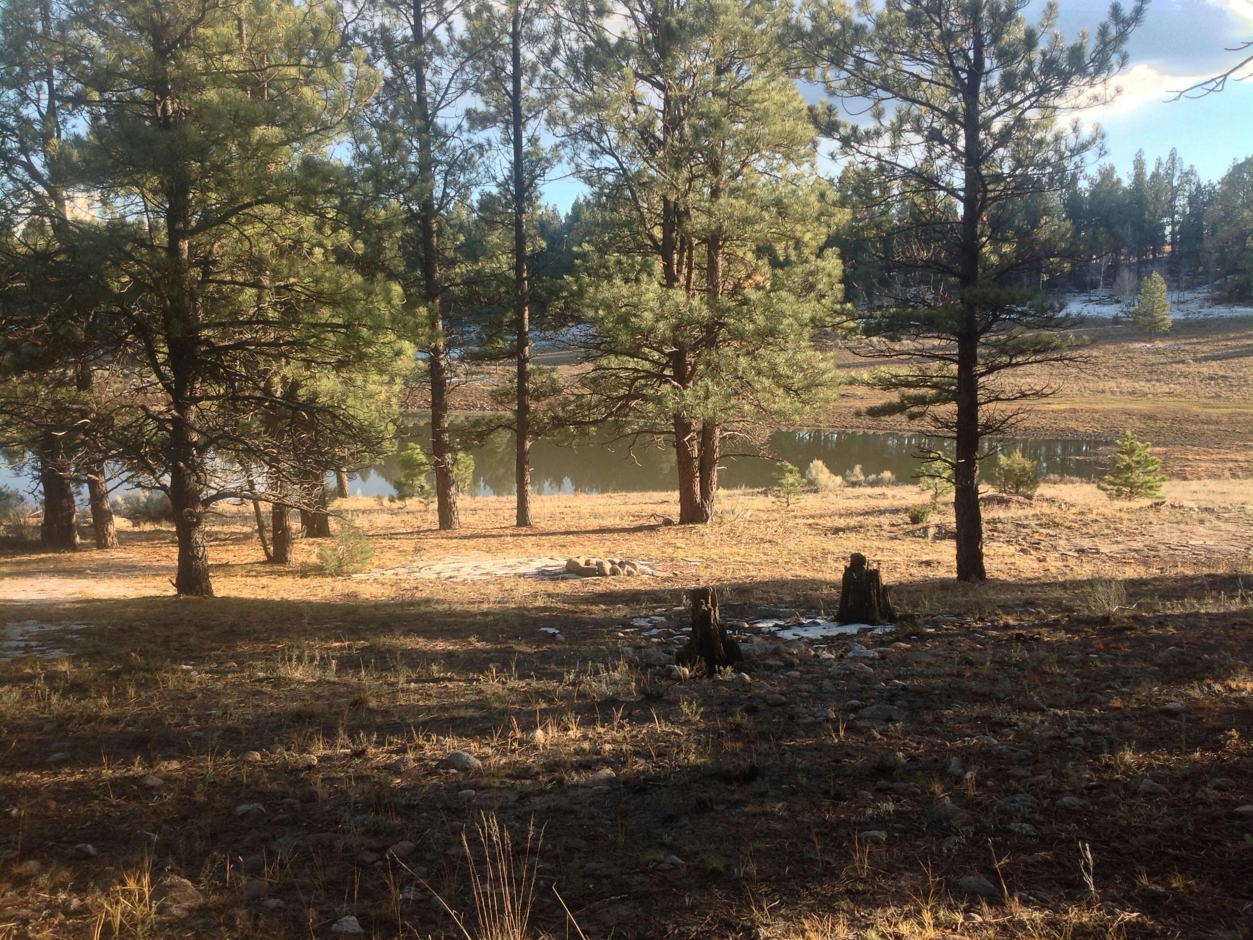 土地 为 销售 在 Rio Tusas Ranchito Tres Piedras, 新墨西哥州 87577 美国